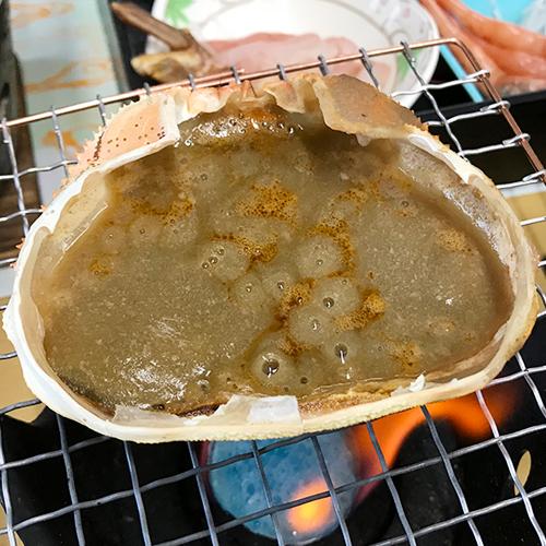 鳥取砂丘&城崎温泉&カニ!ダイナミックキャンペーン日帰りバスツアー