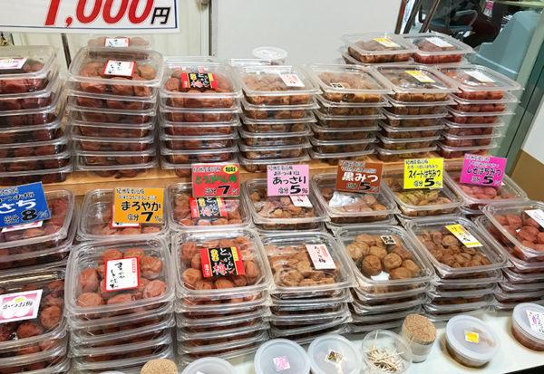 和歌山 日帰り バスツアー 紀州梅干館 試食 試飲 お土産 買い物